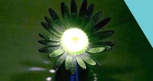 Scientists Create 3D Printed Photoresponsive Blooming Flower