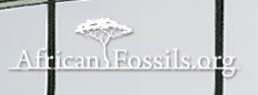 Africanfossils.irg.png