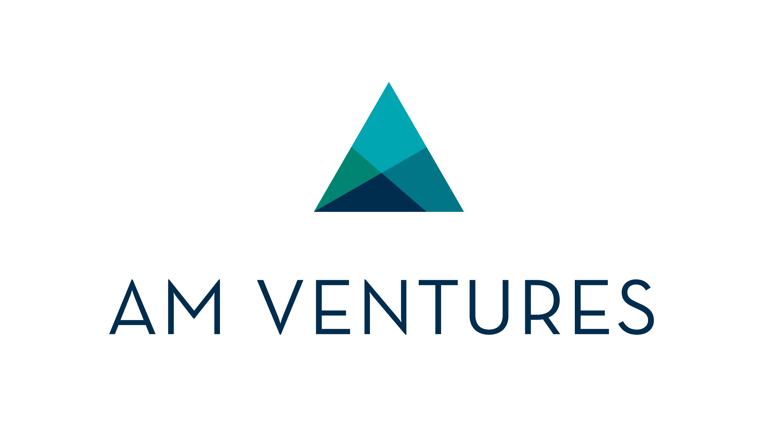 AM Ventures Holding GmbH