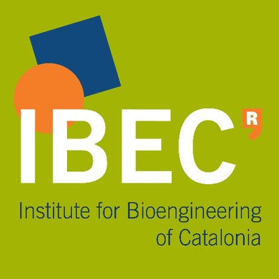 Institute for Bioengineering of Catalonia (IBEC)