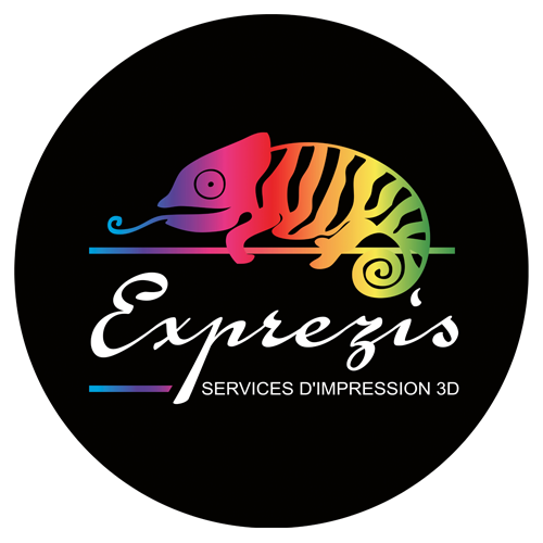 Logo-exprezis-transparent